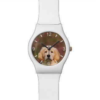 Cute Golden Retriever Dog Puppy - girly dial-plate Watch