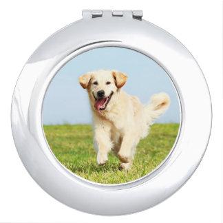 Cute Golden Retriever Puppy Running on Grass Compact Mirror