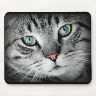 Cute Gray Kitty Cat Face Mouse Pad