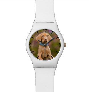 Cute Hungarian Vizsla Dog Puppy Photo - dial-plate Watch
