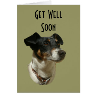 Cute Jack Russell Dog Greeting Card