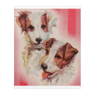 CUTE Jack Russell terriers illustration Acrylic Wall Art