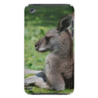 Cute Kangaroo iTouch Case iPod Touch Cover