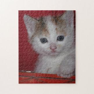 Cute Kitten Jigsaw Puzzle