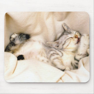 Cute Kitty Cat! Mouse Pad