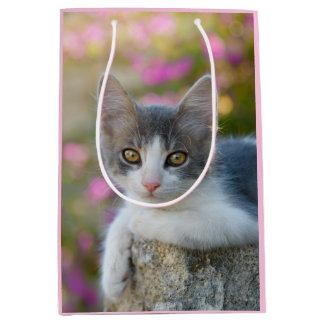Cute Little Bicolor Kitten Fluffy Photo Cat Lovers Medium Gift Bag