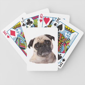 cute little pug dog bicycle playing cards