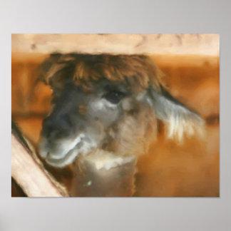 Cute Llama Face Farm Animal Art Poster