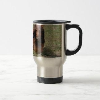 Cute Long Haired Daschund Stainless Steel Travel Mug