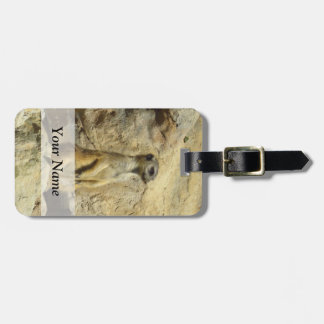 Cute meerkat photograph luggage tag