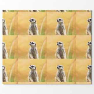 Cute Meerkat Wrapping Paper