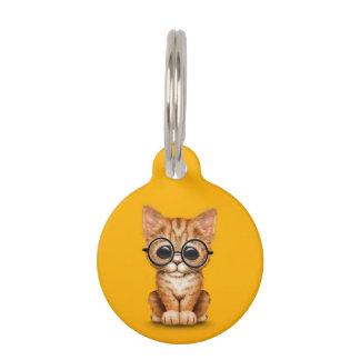 Cute Orange Tabby Kitten with Eye Glasses yellow Pet ID Tags