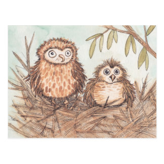 Cute Owl Brothers Postcard