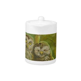 Cute Owl Couple under the Mushroom