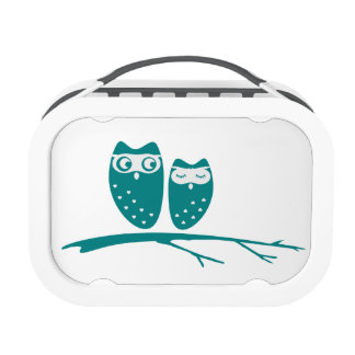 Cute owl couple with hearts lunch boxes