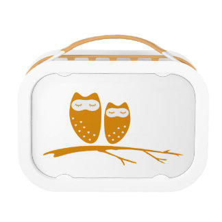 Cute owl couple with hearts lunchboxes