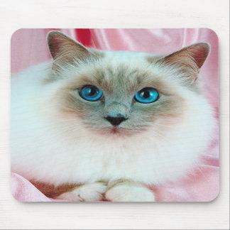 Cute Pedigree Cat Mouse Pads