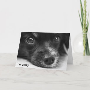 Cute sorry puppy cards zazzle nz cute puppy face im sorry card voltagebd Images