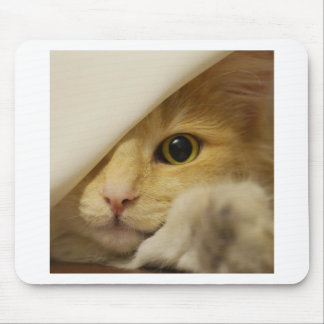 Cute Pussy Cat Mouse Pads