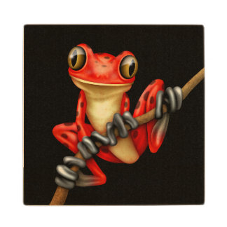 Cute Red Tree Frog on a Branch on Black Wood Coaster
