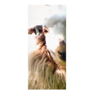 CUTE SHEEP FULL COLOUR RACK CARD