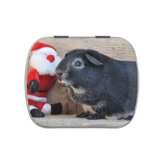 Cute Silver Fox Guinea Pig and Santa Claus Jelly Belly Tin