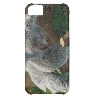 Cute Sleeping Koala Bear iPhone 5C Case