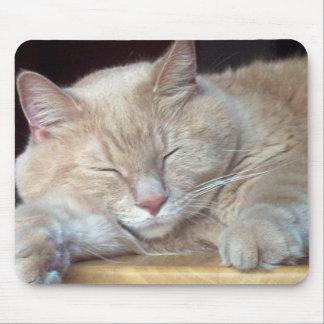 CUTE SLEEPY CAT MOUSE PAD