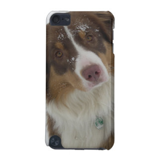 Cute Snow Dog iPod Touch 5G Cover