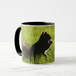cute squirrel eating an acorn on grass -animal mug