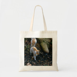 Cute Squirrel Photograph, Animal In Forest Tote Bag