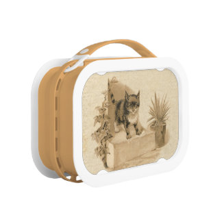 Cute Vintage Cat Drawing Antique French Card Lunch Boxes