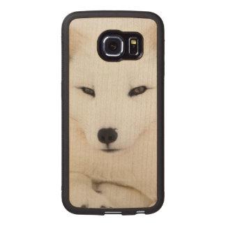 Cute white arctic fox face Galaxy S6 Edge case