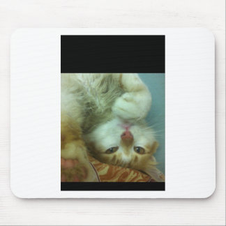Cute White Cat Mouse Pad