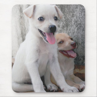 Cute White Puppy Mousepad