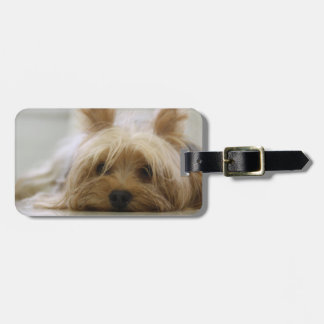 Cute Yorkie Bag Tag