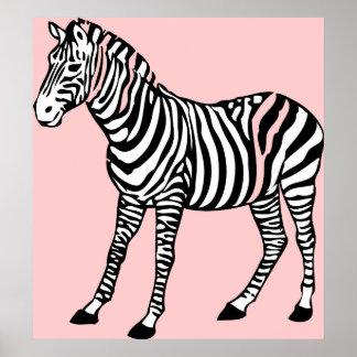 Cute Zebra Poster