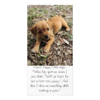 Cutest Puppy Ever Custom Photo Card