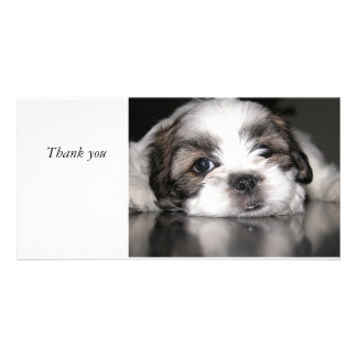 cutest puppy ever, Thank you Personalized Photo Card