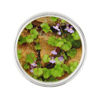 Cymbalaria Muralis Lapel Pin