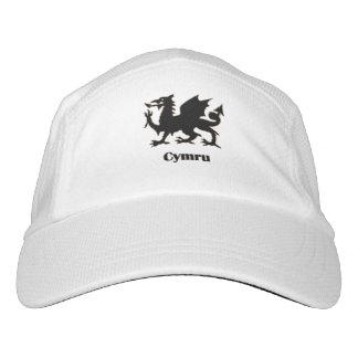 Cymru, CAP