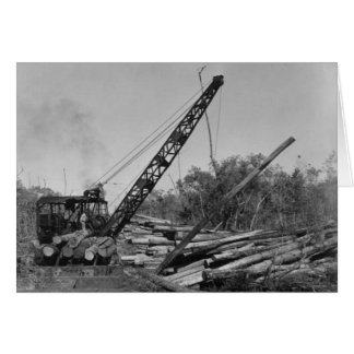 Cypress Lumbering in the Florida Everglades, 1952 Card