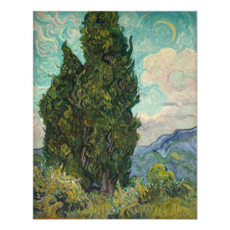 Cypresses by Vincent Van Gogh Photograph
