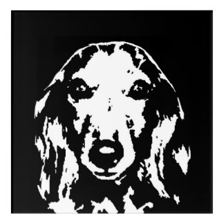 Dachshund Black & White Acrylic Wall Art