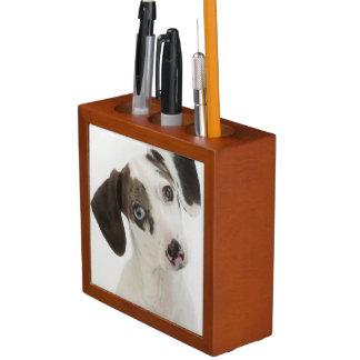 Dachshund/Chihuahua female puppy staring Desk Organiser