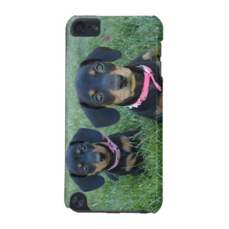 dachshund puppy iPod touch 5G covers
