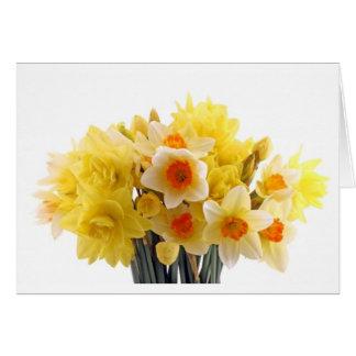 daffodil card