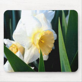 Daffodil Mouse Pad