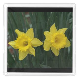Daffodil, Perfume Tray. Acrylic Tray