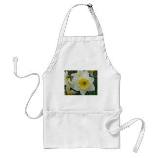 daffodil standard apron